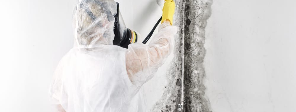 man dressed in PPE suit and respirator removing black mold from wall